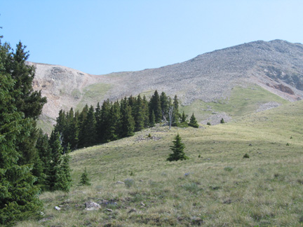 Garner Pass seen from close to treeline