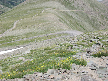 Trail that bypasses the road near the summit of Hermit Pass