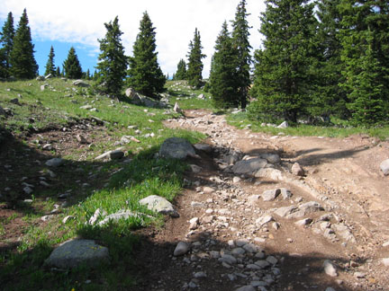 The rough road to Pomeroy Lakes