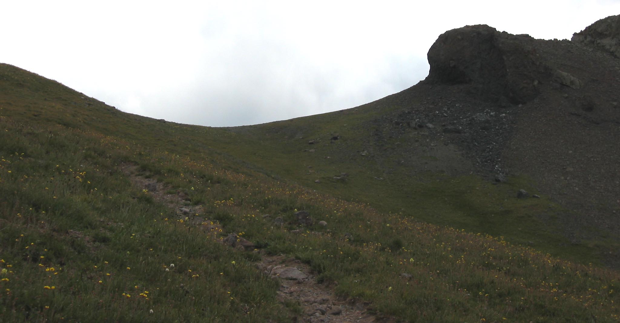 Summit of Wildhorse Creek Pass